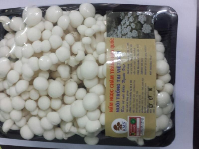 Bảo quản nấm ngọc trâm với màng bọc thực phẩm để trong tủ lạnh