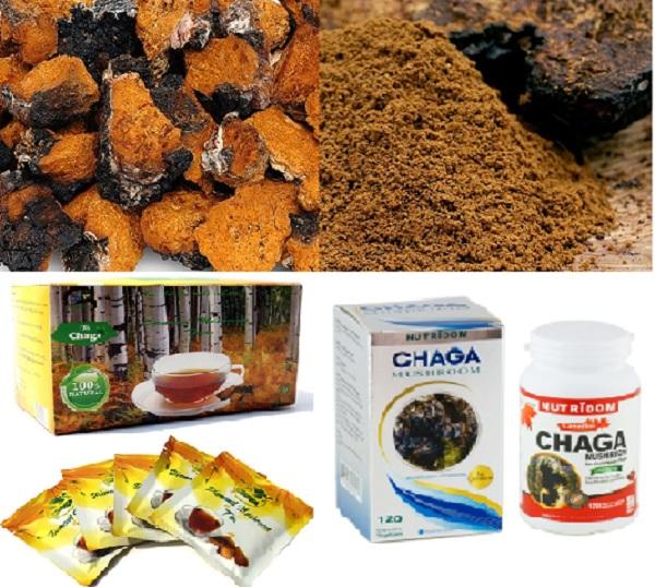 Công dụng của nấm chaga rất tốt cho cơ thể, đặc biệt những bệnh nhân ung thư.