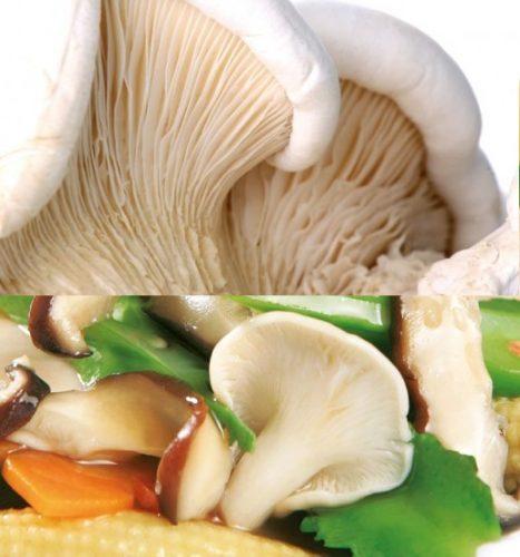 Cách chế biến nấm bạch linh xào dầu hào thơm ngon.