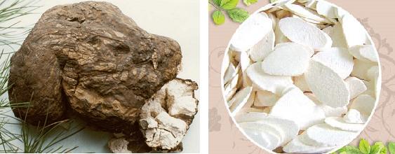 Tác dụng của nấm bạch linh với sức khỏe được đánh giá cao