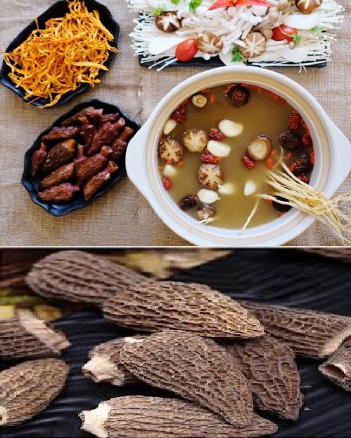 Công dụng của nấm bụng dê trong ẩm thực