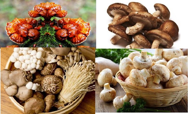 Cách sử dụng nấm giảm cân dạng tươi