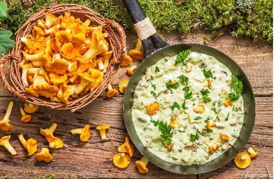 Cách chế biến nấm mỡ gà ngon và bổ dưỡng