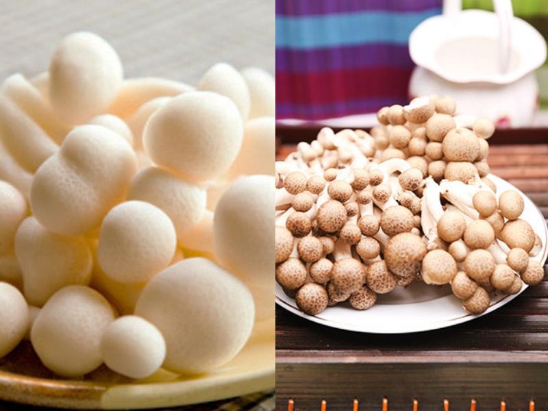 Công dụng của nấm ngọc trâm là giúp phòng chống xơ gan và nhiều bệnh khác.