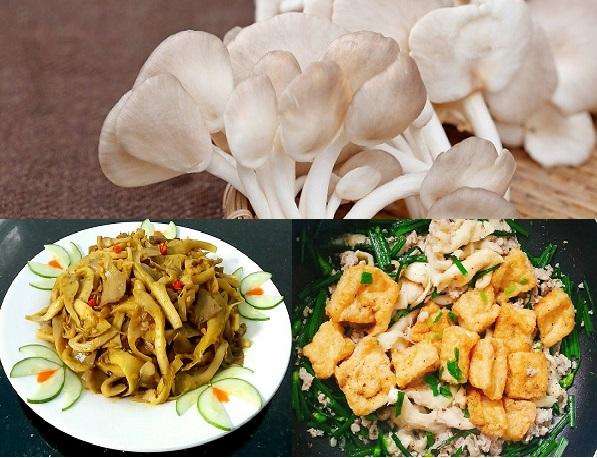 Chế biến nấm sò thành nhiều món ăn bổ dưỡng