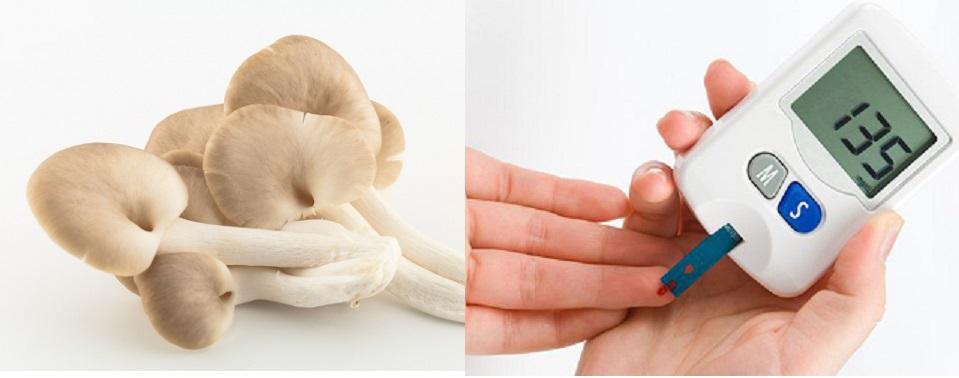 Công dụng của nấm sò trong hỗ trợ điều trị bệnh tiểu đường