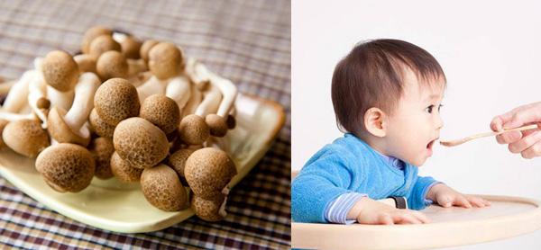 Nấm thủy tinh nâu rất tốt cho sức khỏe của trẻ